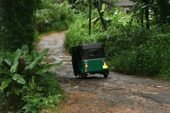 En tuk-tuk dans la jungle du Sri Lanka