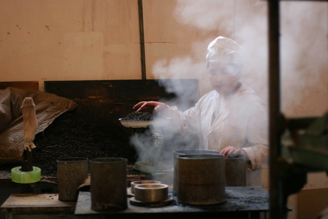 Pour former des galettes de thé Pu Er on assouplit  les feuilles à la vapeur.