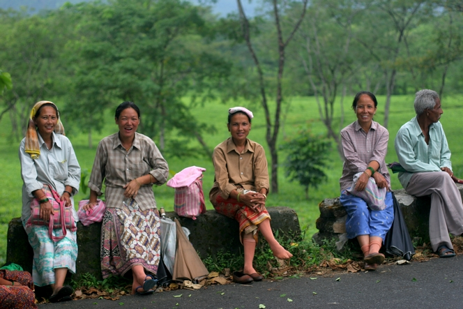 Quelques cueilleuses et cueilleurs de Longview Tea Estate à Darjeeling.