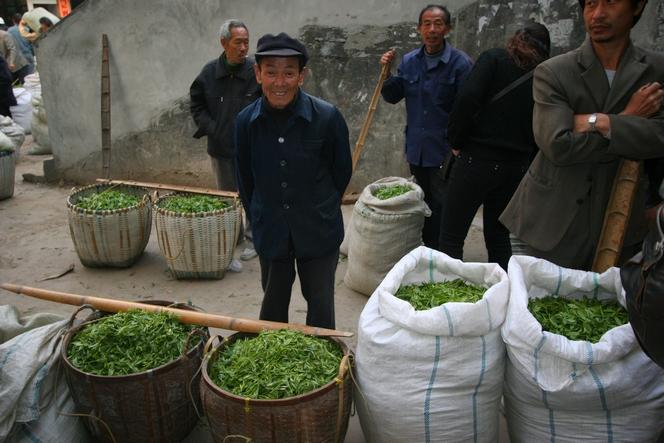 Thés primeurs vendus par Monsieur Li au marché de Fuding.