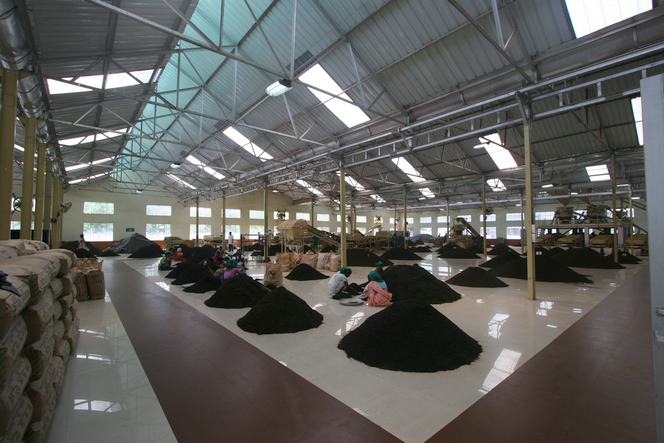 A Amgoorie, la factory est d'une grande propreté