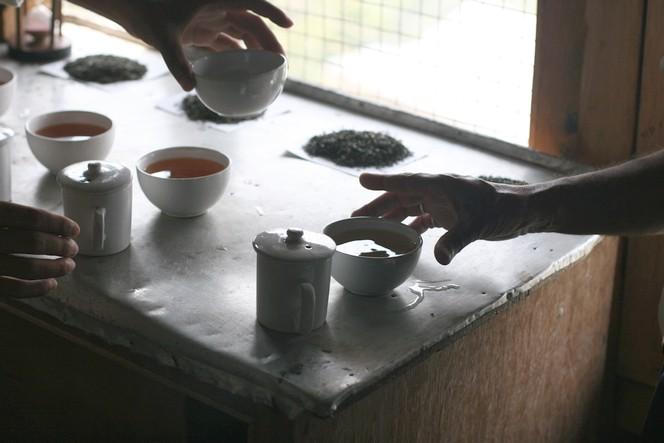 La dégustation de thé : un moment privilégié