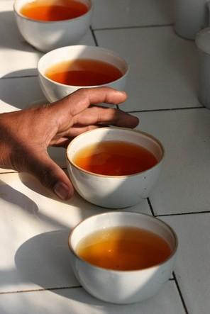 Deux bonnes raisons de boire du thé