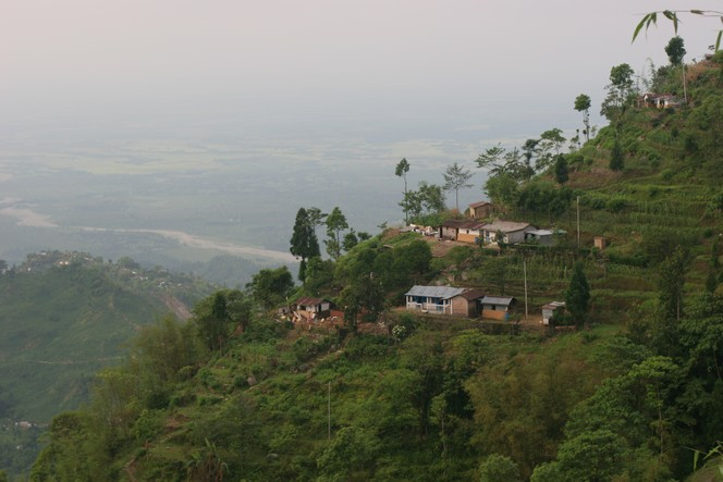 Les jardins de basse altitude récoltent les premiers