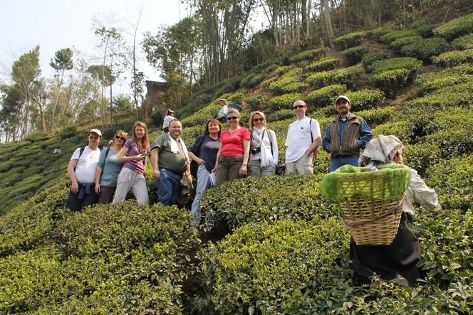 Huit élèves de l'Ecole du Thé à Darjeeling
