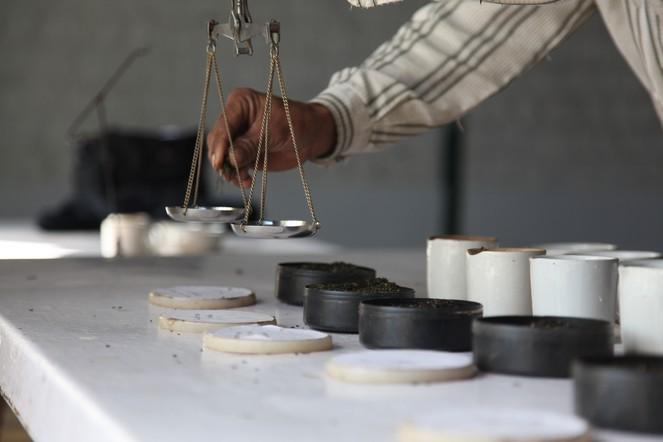 Bien doser le thé lors des dégustations