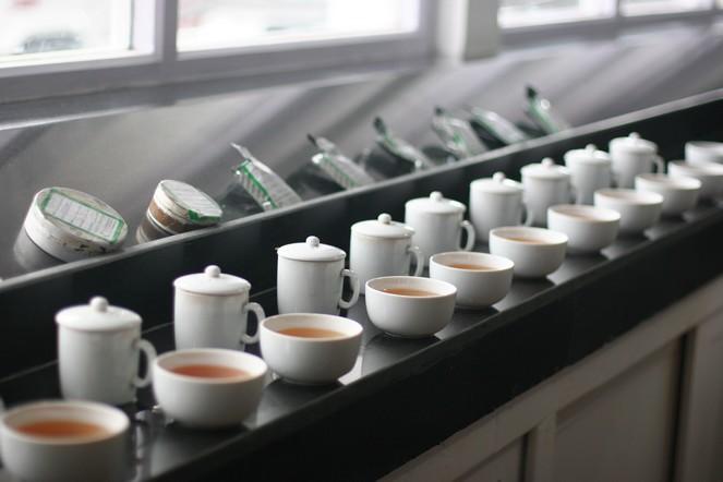 Dégustations de thé
