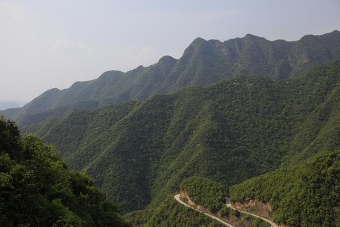 Visite des plantations de grands crus de Chine
