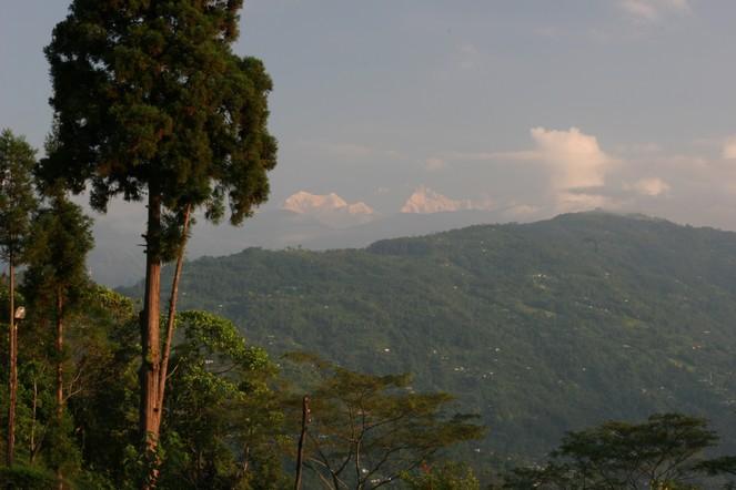 Paysage d'automne à Darjeeling