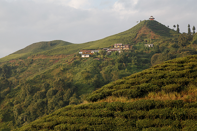 Un manque de main d'œuvre au Népal