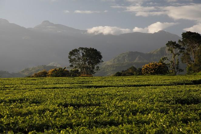 Le Malawi : une belle découverte