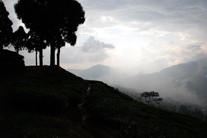 Sous les nuages himalayens
