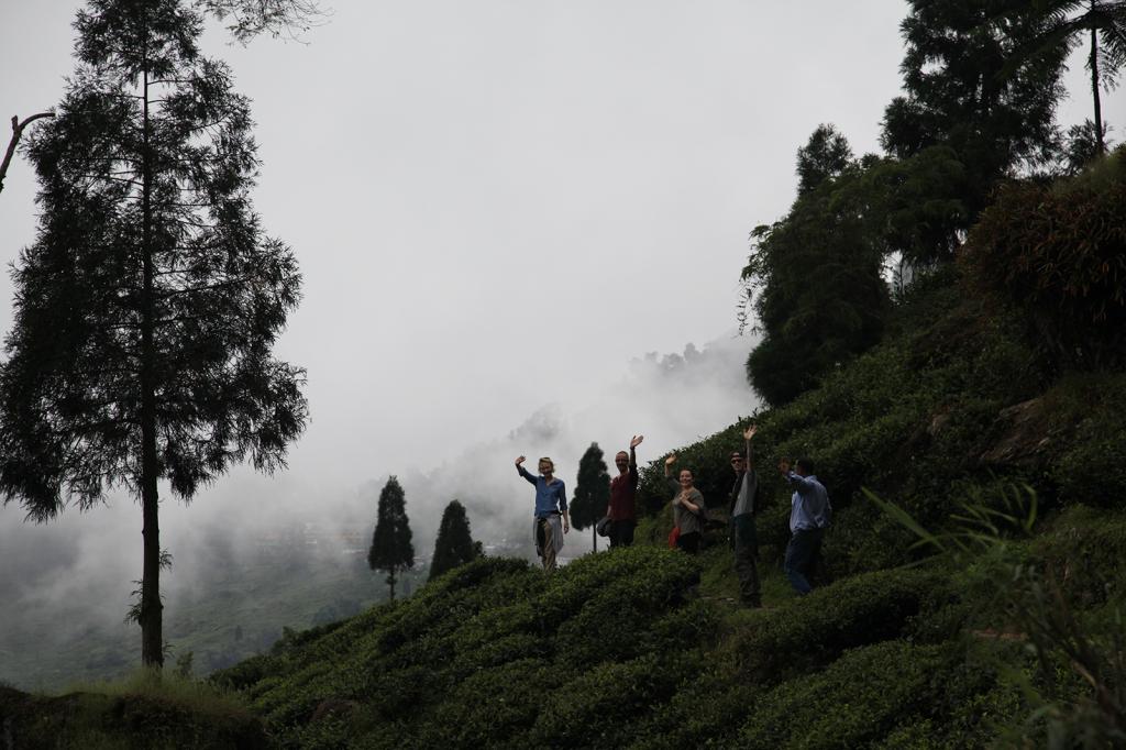 Bonjour de Darjeeling