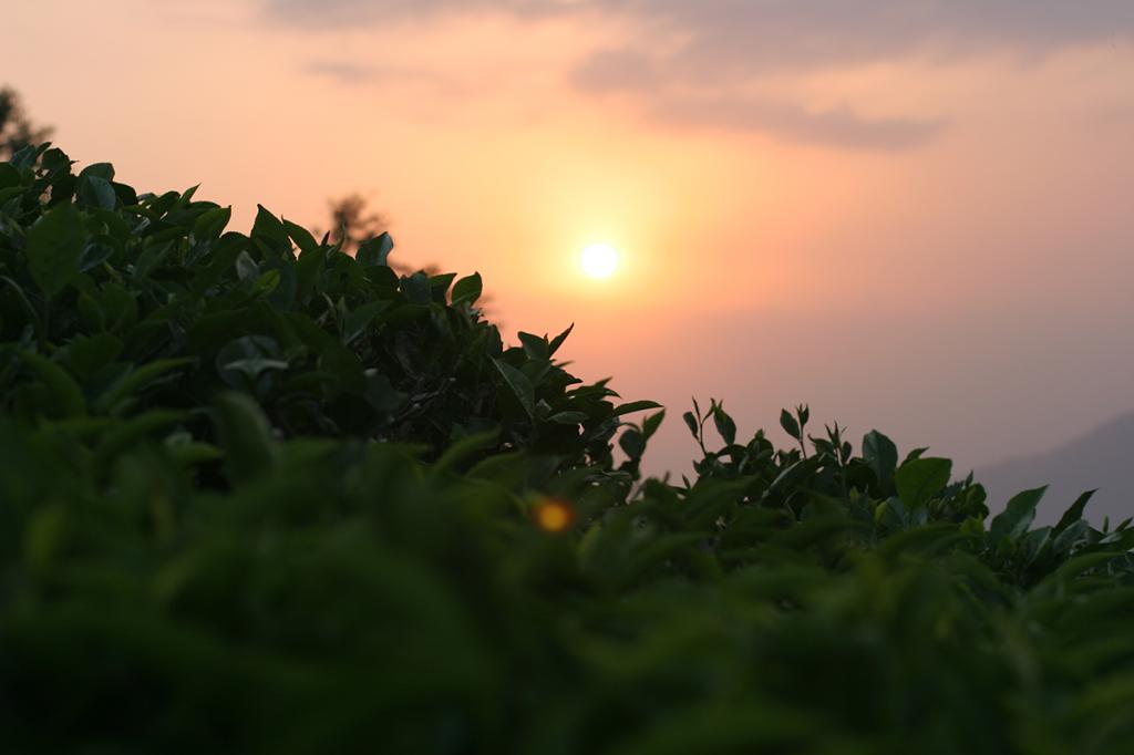 Coucher de soleil sur Darjeeling