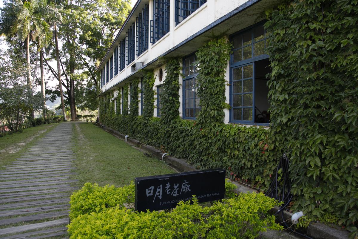 A Taïwan, une fabrique de thé noir devenue musée