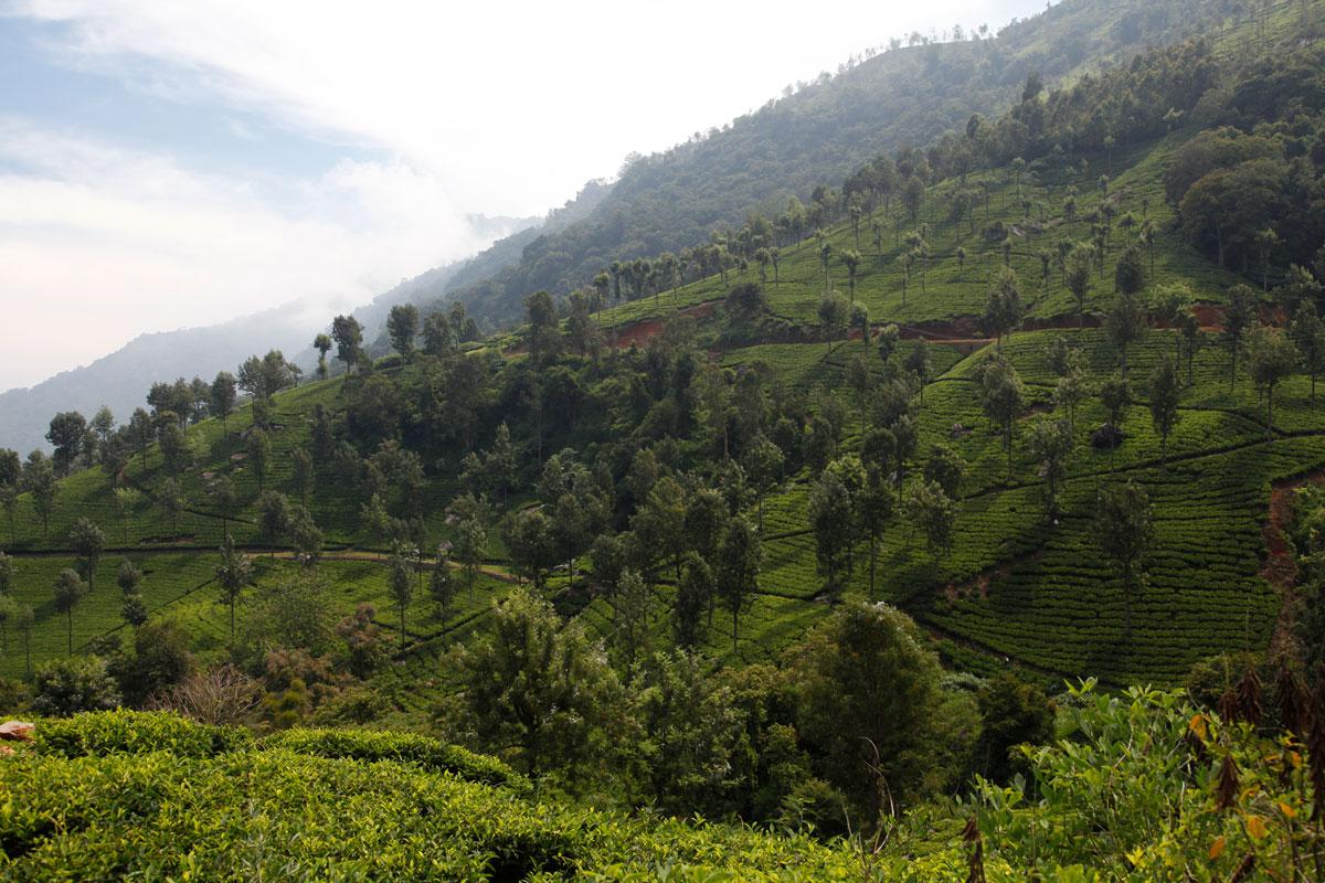 En Inde, un sud montagneux