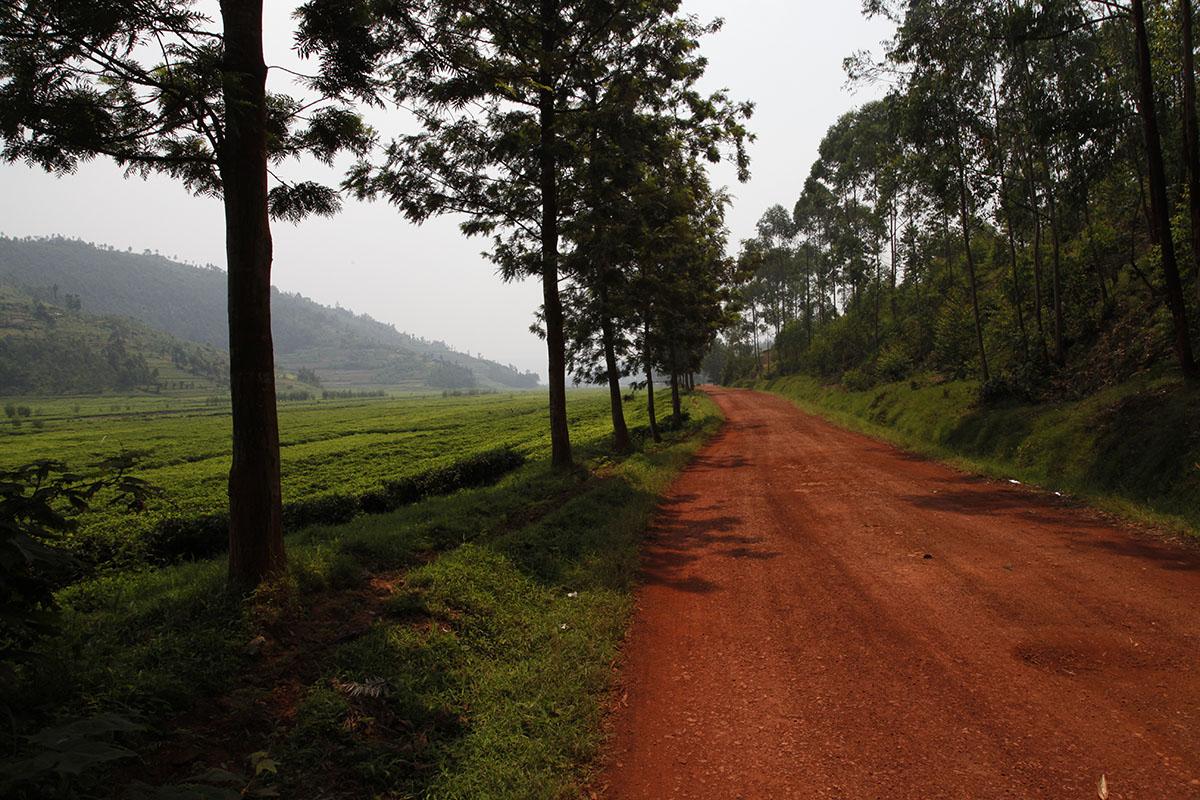 En route pour le Rwanda
